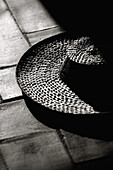 B&W, Black-and-White, Close up, Close-up, Closeup, Detail, Details, Exterior, Hat, Hats, Headgear, Object, Objects, On the floor, One, Outdoor, Outdoors, Outside, Season, Seasons, Shadow, Shadows, Still life, Straw hat, Summer, Summertime, Sunny, Thing, T