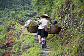 Hilltribe women carrying vegetable baskets after farming, Guilin, China
