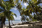 Playa Frontón, Samaná Peninsula, Dominican Republic