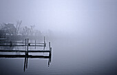 Docks on foggy lake