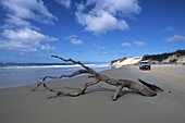 Driftwood and KEA 4WD, 4 wheel drive camper on the beach, Near Dilli Village, Fraser Island, Queensland, Australia
