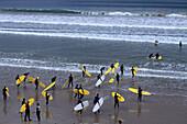 Go Ride A Wave Surf Class, Great Ocean Road, Anglesea, Victoria, Australia