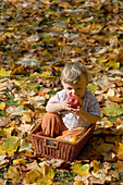 Child sitting in a basket while eating an apple, München, Bavaria, Germany
