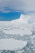 Broken first year floe ice mixed with brash ice below the Antarctic Circle around the Antarctic Peninsula during the summer months  More icebergs are being created as global warming is causing the breakup of major ice shelves and glaciers
