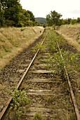 Disused, Germany, Goslar, Harz, Lower, Overgrown, Rail, Railroad, Railway, Saxony, Tracks, L35-809369, agefotostock