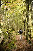 Adult, Adults, Back, Backpack, Body, Color, Colour, Contemporary, Daytime, Equipment, Europe, Exterior, Fallen, Forest, Forests, Full, Full-body, Full-length, Gear, Hike, Hiker, Hikers, Hiking, Human, Irati, Leaves, Leisure, Length, Man, Navarra, Navarre,