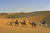 Morocco, near Merzouga, Erg Chebbi, Sahara Desert Dunes, Camel Train with Tourist and Guide