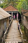 Vietnam Mekong Delta Ferry Island Stilted houses and walkway