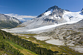 Late summer meadows below Salal Peak, Athelney Pass and Mount Ethelweard 2819 m 9249 ft are on the right Coast Mountains British Columbia Canada