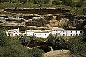 Typical houses, Setenil de las Bodegas. Pueblos Blancos (white towns), Cadiz province, Andalucia, Spain