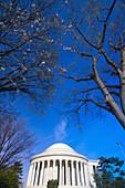The Jefferson Memorial, Cherry Tree Walk, Tidal Basin, Washington D C, U S A