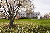 The White House, Washington D C, U S A
