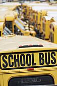 School buses, Coney Island, NYC, USA