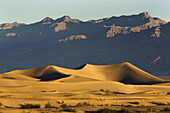 Sand Dunes at sunrise in Death Valley National Park, California