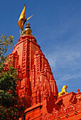 The only Brahma temple in India