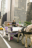 New York City - 59th Street & 5 Avenue Central Park South Next to The Plaza Hotel - See picturesque and romantic Central Park on a horse-drawn carriage  All year round