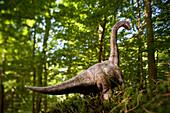 Toy brachiosaurus in front of deciduous trees