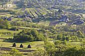 Hay stacks & agricultural landscape near Budesti, Maramures, Romania