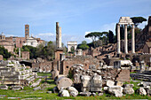 Roman Forum Panorama and Temples of Polux y Castor at the right