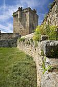 San Felices de los Gallegos Castle or Duque de Alba Castle, in San Felices de los Gallegos, Arribes del Duero Natural Park, Salamanca, Castilla y Leon, Spain, Europe.