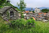 Kirchturm und Kirche über Hausdächer von Viggiona mit Rustico im Vordergrund, Viggiona, Cannero, Lago Maggiore, Piemont, Italien