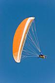 Paraglider against clear sky, Dolomites, Trentino-Alto Adige/Südtirol, Italy