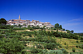 Mountain village Buje under blue sky, Istria, Croatia, Europe