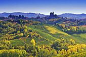Vineyards in front of Serralunga d´Alba in the sunlight, Piedmont, Italy, Europe