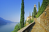 Cypresses at the path to the church of Morcote, view to the Lago di Lugano, Ticino, Switzerland, Europe