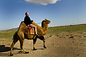 A Foreigner traveler enjoys a ride on a Bactrian camel