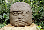 Olmec head at the La Venta Park. Villahermosa, Tabasco state, Mexico