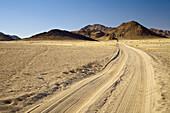 Tracks through the desert, Damaraland, Namibia