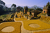 Drying rice between small pagodas, Bhaktapur, Kathmandu valley, Nepal