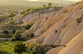 Typical eroded landscape of Cappadoce, Near Uçhisar, Cappadoce, Turkey