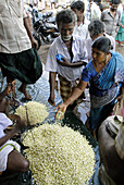 Madurai is well known for its fragrant Jasmine flowers. Jasmine is known as Malli or Malligai in Tamil. Jasmine is an important horticultural produce in Tamil Nadu. The buds are transported every day to major cities in India and Singapore