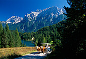 Horse-drawn carriage in the sunlight in front of lake Lautersee and Karwendel mountains, Bavaria, Germany, Europe