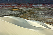 Sand dunes at Death Valley, California, USA, America