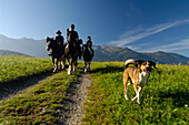Riders and a dog on a track at Mieminger Plateau, Tyrol, Austria, Europe