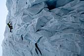 Man ice climbing at a glacier, Tyrol, Austria, Europe