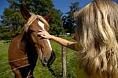 Girl stroking a horse, near Murnau, Upper Bavaria, Bavaria, Germany
