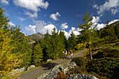 Mountainbiken in den Nockbergen, Nahe Bad Kleinkirchheim, Kärnten, Österreich, Europa