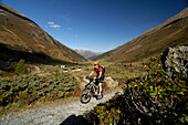 Man on a mountain bike tour, MTB, mountainbiking near Davos, Albula Range, Grisons, Switzerland