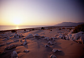 Sandy beach with stones at sunset, Pantara Beach, Lycia, Turkey, Europe
