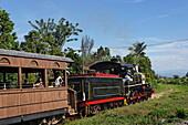 Steam locomotive, Valle de los Ingenios, Trinidad, Sancti Spiritus, Cuba, West Indies