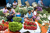 Sunday market in Tlacolula town.Vegetable vendors  . Oaxaca, Mexico.
