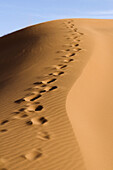 Abstract, Africa, Beauty, Desert, Dry, Dune, Dunes, Foot, Geography, Landscape, Lines, Natural, Nature, Outdoors, Pattern, Prints, Riple, Riples, Sand, Shadow, Shape, Vertical, A75-731139, agefotostock