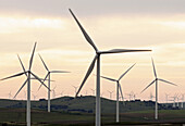Aero, Clean, Color, Colour, Ecological, Ecology, Electricity, Energy, Field, Future, Generator, Green, Rotation, Turbine, A75-873967, agefotostock