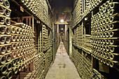 Marques de Riscal wine cellar,  Elciego,  Rioja alavesa. Alava,  Basque Country,  Spain