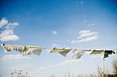 Air, Blue, Blue sky, Clothes, Clothes line, Clothes lines, Clothesline, Clotheslines, Color, Colour, Concept, Concepts, Daytime, detail, details, Dry, Drying, exterior, Light, Lightness, outdoor, outdoors, outside, Skies, Sky, Sunny, Washing, Wind, B75-72