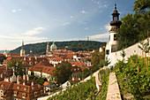 Vineyards overlook mala stana from furstenberg garden hradcany castle gardens. Prague. Czech Republic.